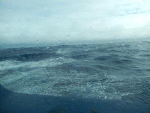 Ocean Waves in the Drake